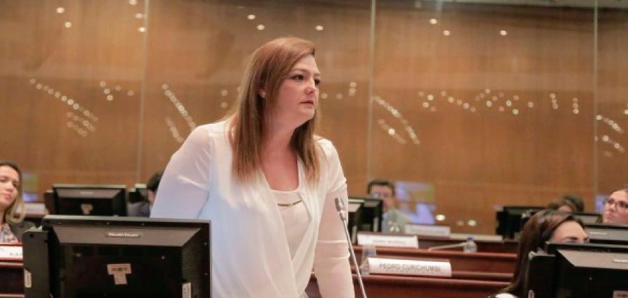 Asambleísta Cuesta pide cuentas al Consejo de Participación por elección de Pólit