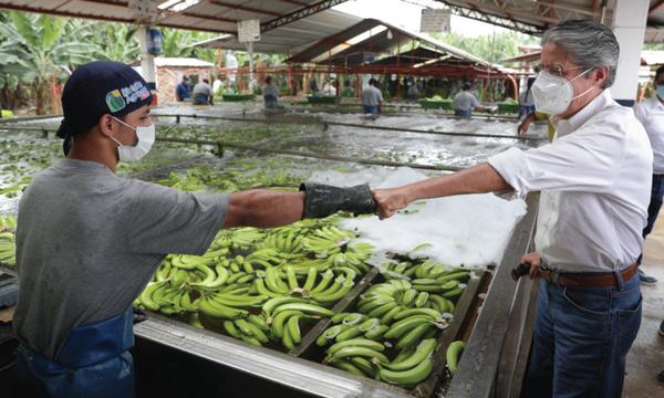 Lasso mantendrá el bono y fortalecerá la agricultura